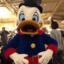 Scrooge McDuck im Plaza Gardens beim Charakter Frühstück