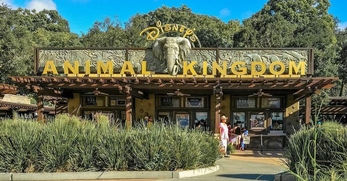 Blick auf ein Schild mit der Aufschrift Disneys Animal Kingdom über dem Eingang zum Themenpark in Disney World