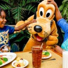 Pluto am Tisch mit Familie