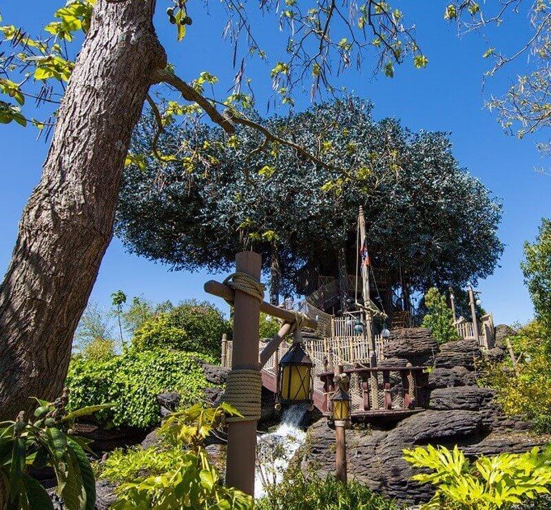 Baumhaus der Familie Robinson in Disneyland Paris