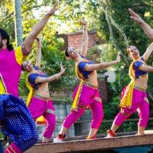 Auf einer kleinen Bühne in Disney's Animal Kingdom tritt eine Gruppe von Bollywood-Tänzern in farbenfrohen Gewändern zu indischer Musik auf