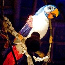 Nahaufnahme eines Audio-Animatronic-Vogels in der Attraktion Enchanted Tiki Room im Magic Kingdom