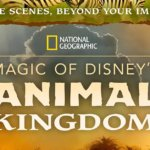 "National Geographic Doku Serie ""Magic Of Disney´s Animal Kingdom"" startet am 25.9.20 in den USA auf Disney+"