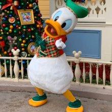 Donald Duck im Weihnachtsoutfit posiert vor einem Weihnachtsbaum