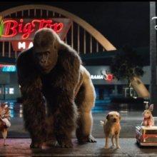 """In einer Szene im Film """"Der einzig wahre Ivan"""" sind der Gorilla Ivan und seine tierischen Kameraden auf der Flucht zu sehen"""
