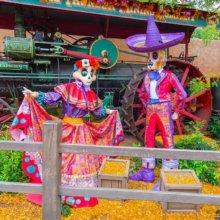 Zwei Figuren von Skeletten mit farbenfroher mexikanischer Kleidung stehen im Frontierland
