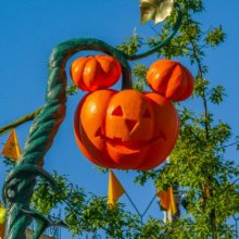 Ein Kürbis in Form von Mickeys Kopf ist als Dekoration auf der Main Street U.S.A. zu sehen