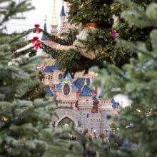 Blick durch grüne Tannenzweige auf das weihnachtliche Dörnröschenschloss