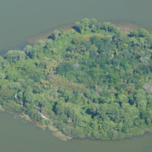 Luftaufnahme der Discovery Island
