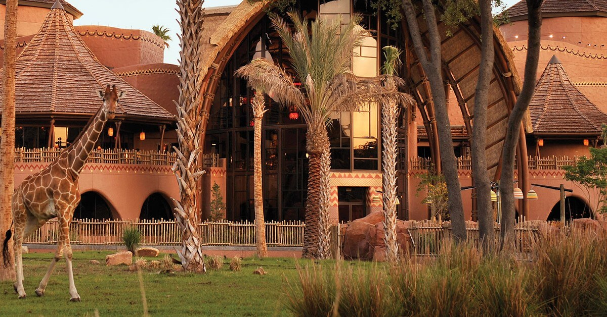 Giraffen an der Animal Kingdom Lodge
