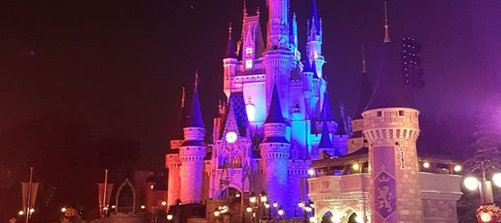 Cinderella Castle im Magic Kingdom bei Nacht