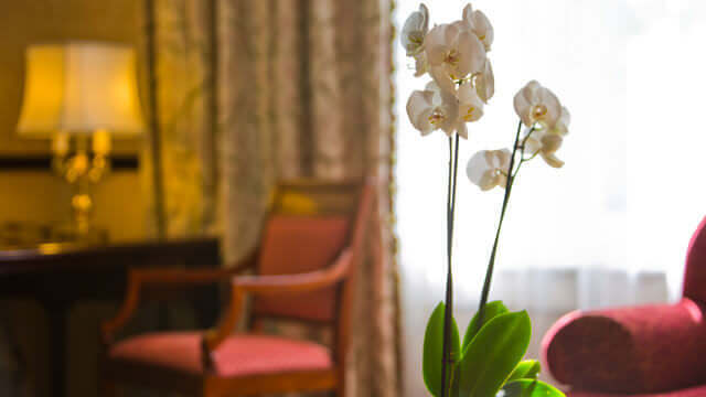 Elegante Einrichtung und Dekoration in der Junior Suite des Disneyland Hotels