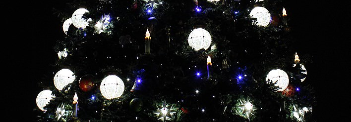 Magical Christmas Wishes am Weihnachtsbaum